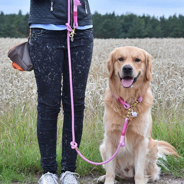 Hundeleine Hündin Pink Gold
