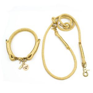 Hundeleinen Set mit Halsband Luxus in Gold