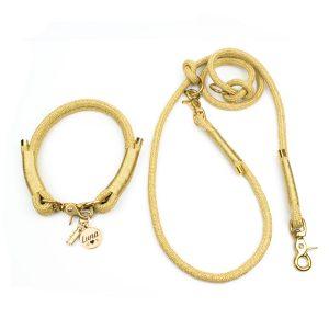 Hundeleinen Set mit Halsband Luxus in Gold