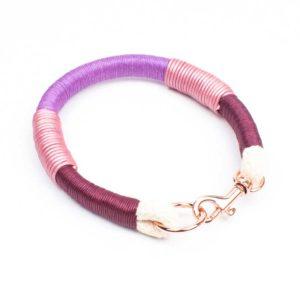 Halsband für kleine Hunde